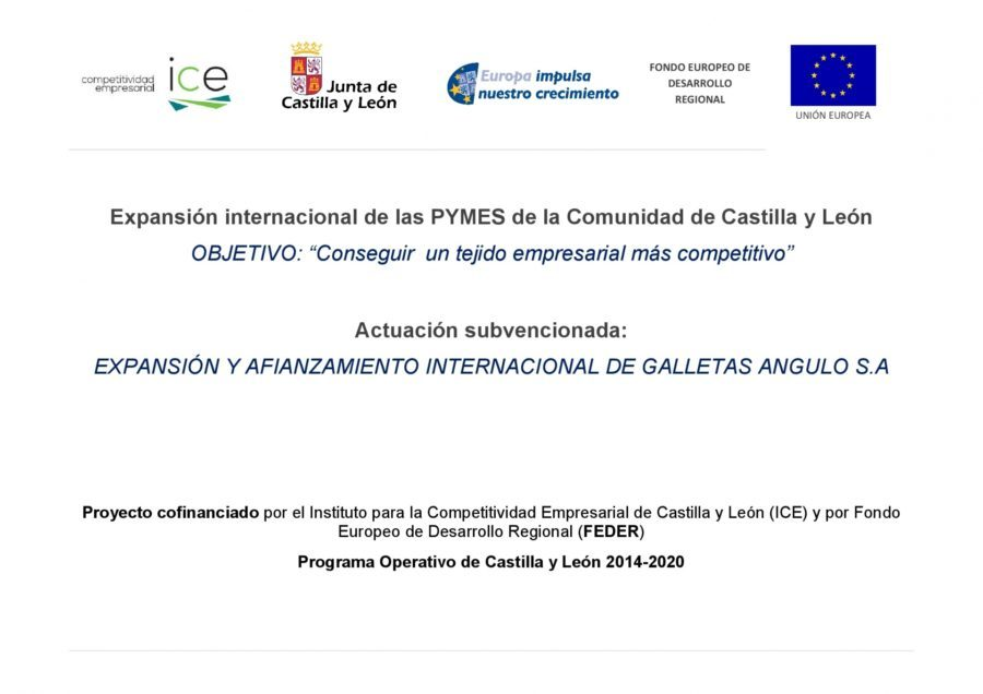 Internacional Expansion OF CASTILLA Y LEÓN SMEs